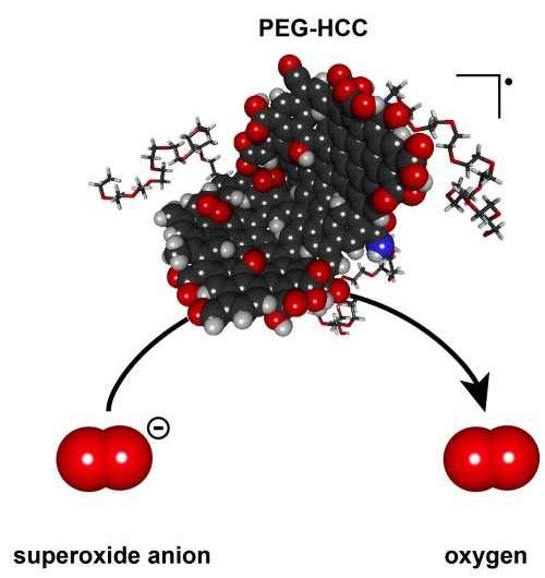 Nano-antioxidants prove their potential