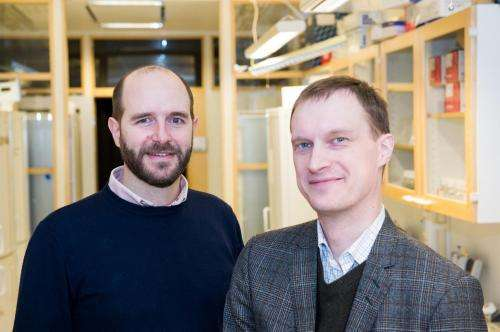New brain mapping reveals unknown cell types