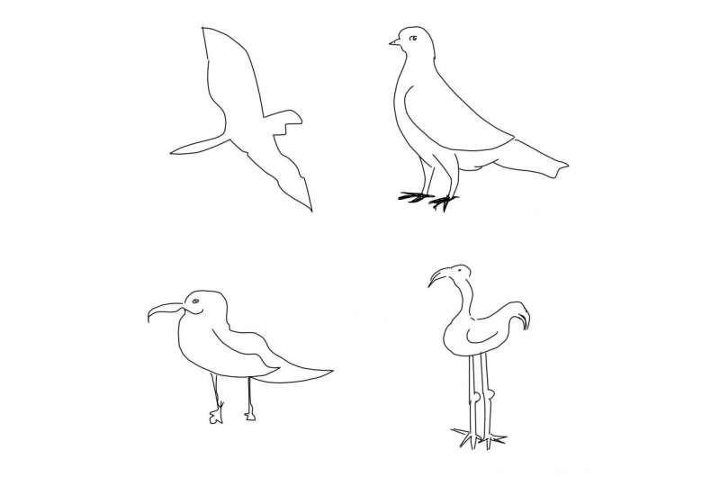 New computer program first to recognise sketches more accurately than a human