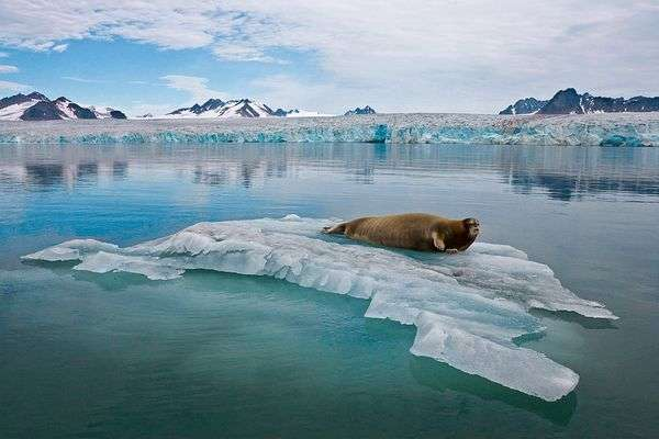 NOAA's new Climate Science Strategy outlines efforts to build resilience