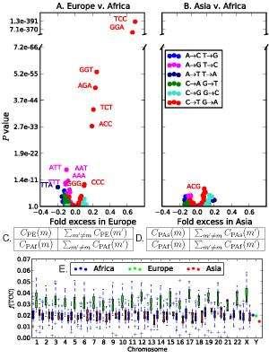 Overrepresentation of 5'-TCC-3' → 5'-TTC-3' within Europe