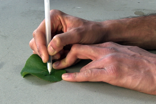 Pens filled with high-tech inks for do-it-yourself sensors