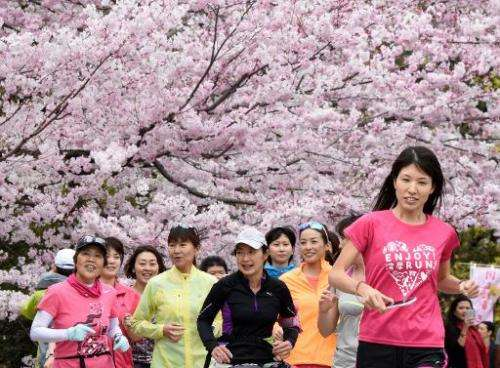 People jog under cherry blossoms in full bloom in Tokyo on March 29, 2015