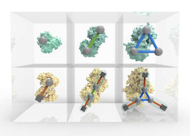 Periodic table of protein complexes