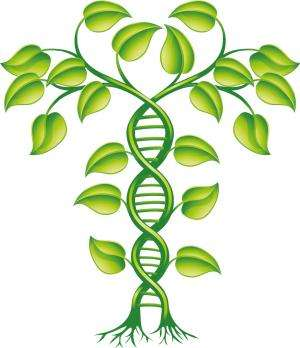Plant protein structure database will help to uncover unknown functions of plant genes