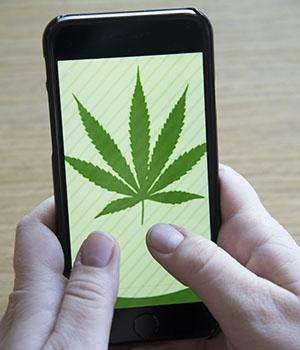 Pro-marijuana 'tweets' are sky-high on Twitter
