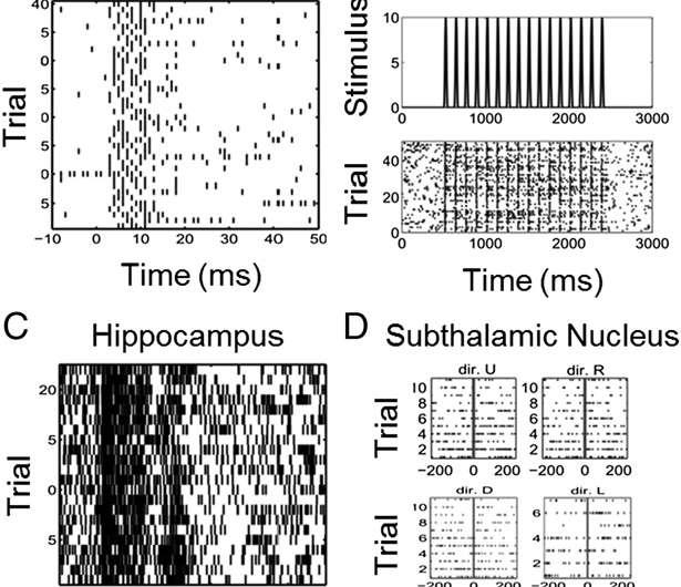 Raster plots of neural spiking activity