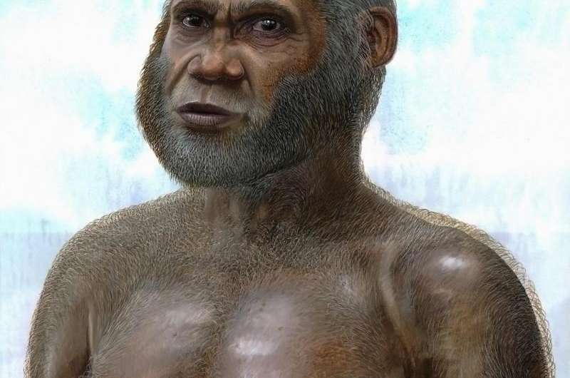 'Red Deer Cave people' bone points to mysterious species of pre-modern human
