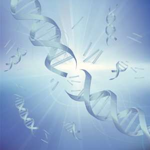 Refinement of an algorithm for determining genetic ancestry could help identify genetic factors in disease