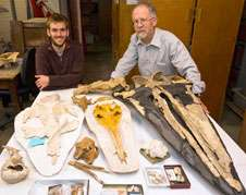 Research details 40 million-year-old family tree of baleen whales
