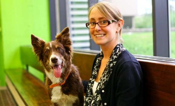 Researcher aims to shed light on diabetic alert dogs