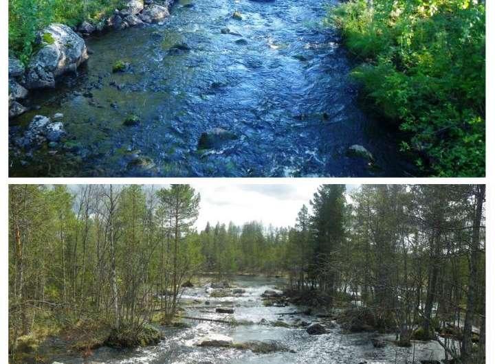 Restoration project recreates variation in the Vindel River