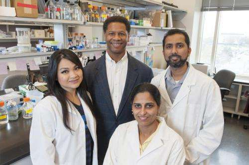 Restoring ability to halt cell division may protect lung cells from cancer