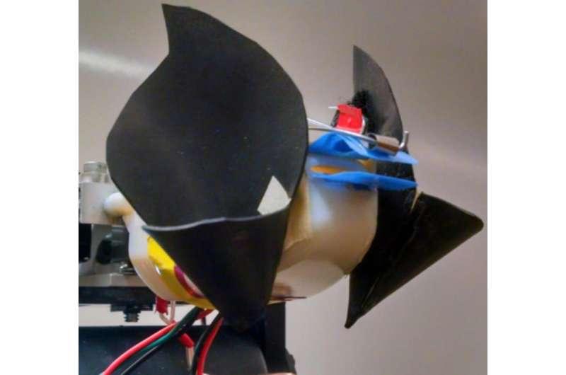 Robotic sonar system inspired by bats