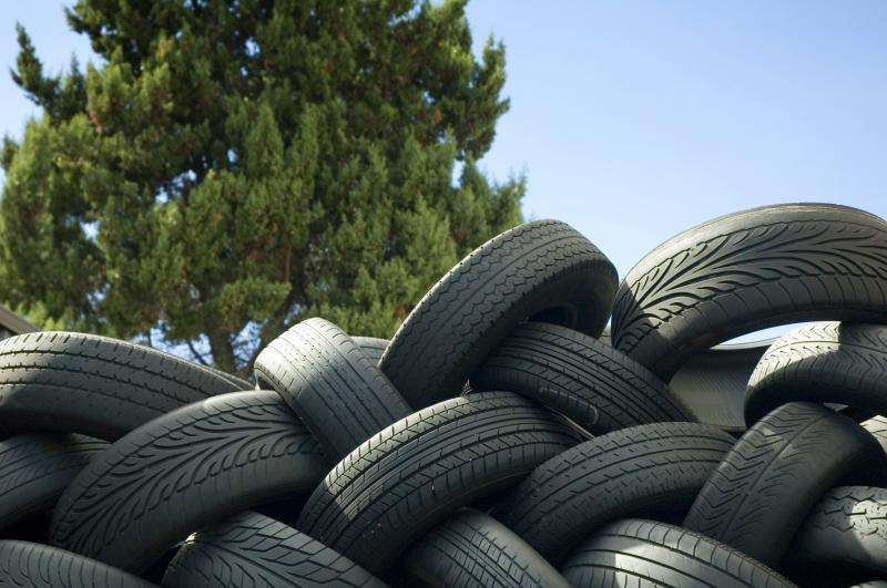 Rubber is produced using renewable raw materials as an alternative to petroleum by-products