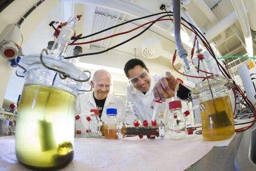 Running fuel cells on bacteria