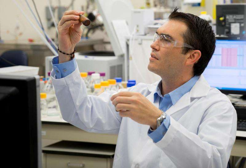 Scientist refines all-natural ingredients to preserve cosmetics