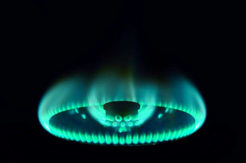 Scientists a step closer to developing renewable propane