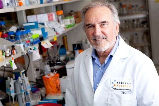 Scripps Florida scientists unveil critical mechanism of memory formation