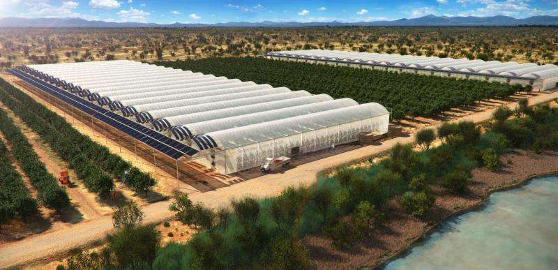 Seawater greenhouses to bring life to the desert