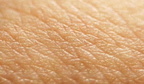 Skin based immunity secrets revealed