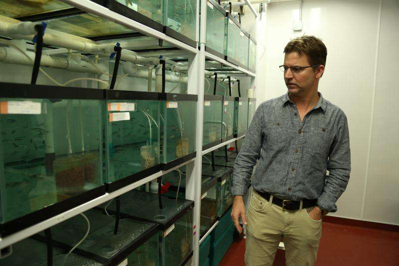 Small fish species evolved rapidly following 1964 Alaska earthquake