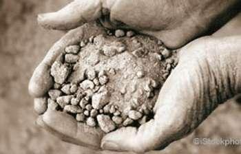 Soil loss—an unfolding global disaster