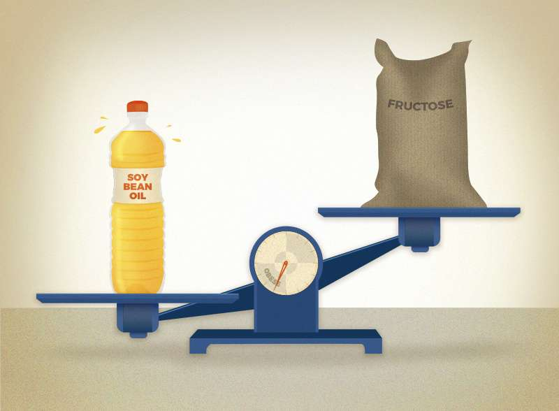 Soybean oil causes more obesity than coconut oil and fructose