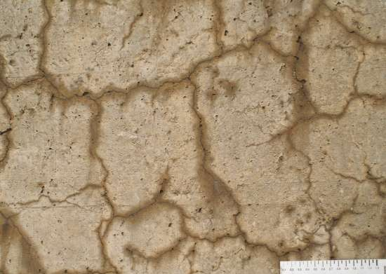 Structure of 'concrete disease' solved