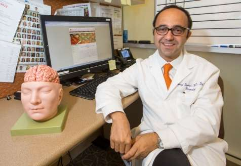 Study deciphers the noise in the human brain