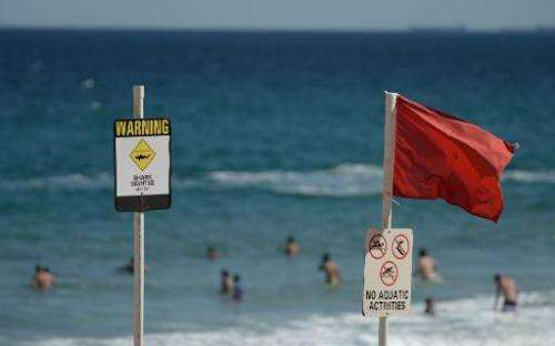 Swimmers are seen in the water despite shark warning signs posted on the beach in the northern New South Wales city of Newcastle