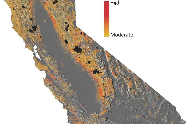 Tens of millions of trees in danger from California drought
