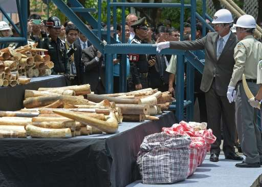 Thailand's Prime Minister Prayut Chan-O-Cha (2nd R) looks at pieces of ivory on display during a destruction of confiscated ivor