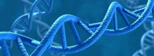 The epigenetic switchboard