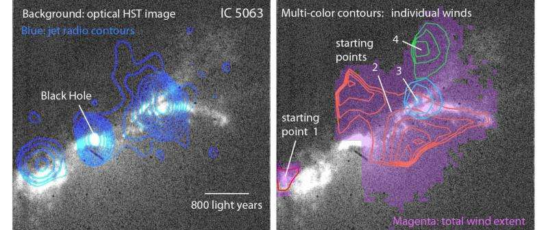 The jet of a black hole drives multiple winds in a nearby galaxy