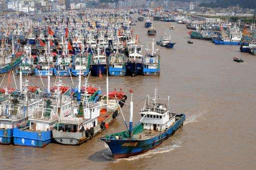 The number of Chinese-flagged or Chinese-owned fishing boats operating in Africa has soared in recent decades, from just 13 in 1