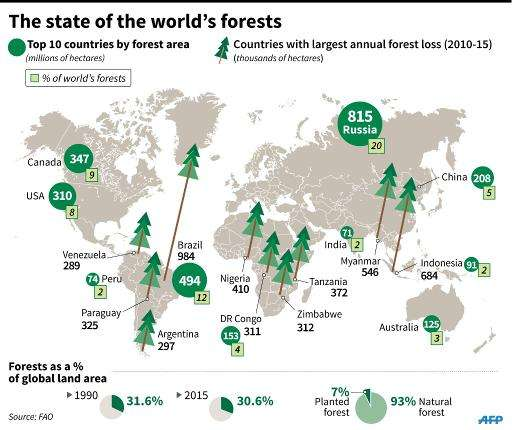 The state of the world's forests