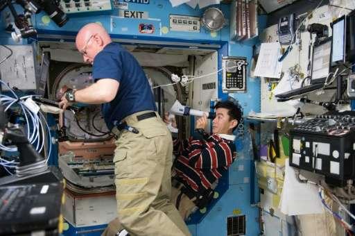 This August 5, 2015 NASA photo shows NASA astronaut Scott Kelly (L) assisting Japan Aerospace Exploration Agency (JAXA) astronau