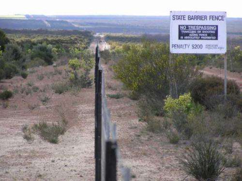 Thousands predicted to die along state barrier fence
