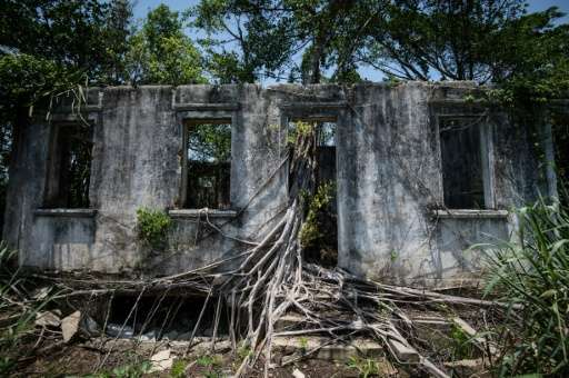 Tree roots invade an abandoned house in Ilha Seca - a Texaco fuel depot abandoned by the corporation in the 1950s- at Guanabara
