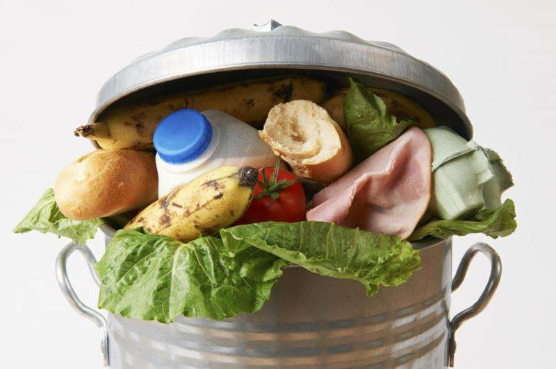 UK bottom of European avoidable food waste league