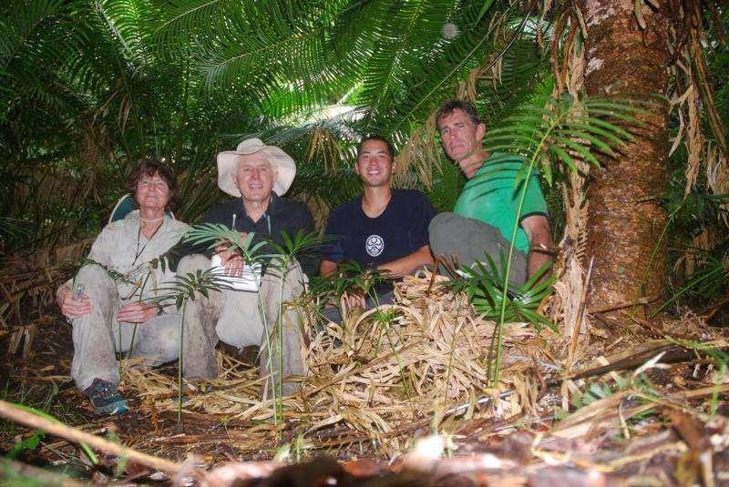 UOG team improves understanding of Guam plant's pollination syndrome