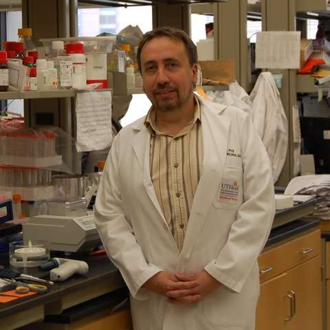 UTHealth research: Grass plants can transport infectious prions