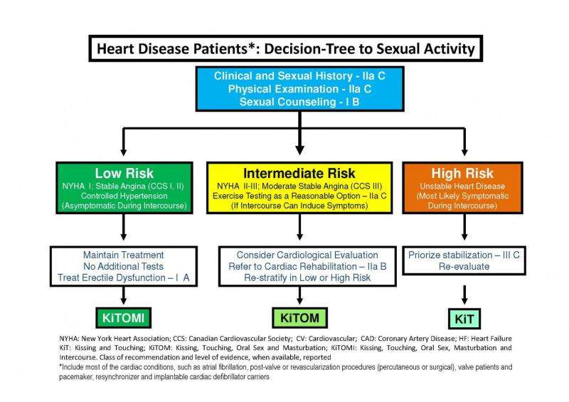 What sex is safe for heart patients: A new approach using the KiTOMI model