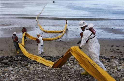 Workers clean up oil spill on California beaches by hand