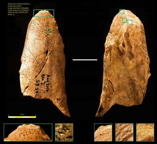 Yabba dabba d'oh! Stone Age man wasn't necessarily more advanced than the Neanderthals