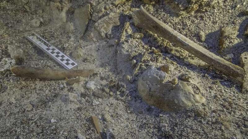 2,000-year-old skeleton found at Mediterranean shipwreck