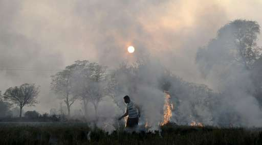 An Indian farmer burns paddy stubble in a field on the outskirts of Jalandhar