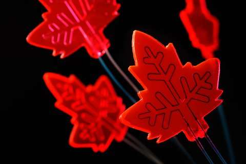 Artificial leaf as mini-factory for drugs