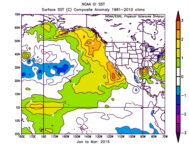 El Nino patterns contributed to long-lived marine heatwave in North Pacific